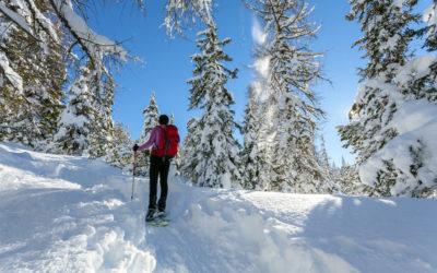 Initiation à la raquette à neige dans les Alpes