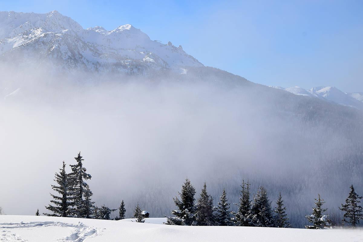 la rosiere randonnee raquettes sapins brouillard